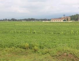 Hà Tĩnh: Nộp tiền gần 3 năm vẫn không được cấp đất, người dân khốn đốn