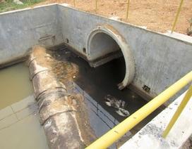 Dân tố nhà máy chế biến gỗ Nghệ An gây ô nhiễm môi trường
