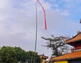 Đón tết cùng lễ dựng nêu tại Hoàng cung Huế