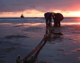 Cáp quang biển APG đến giữa tháng 7 mới được hàn nối xong