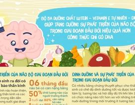 Không chỉ DHA, những dưỡng chất này cũng rất quan trọng với bộ não