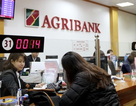 Agribank: Cải cách hành chính - Nỗ lực và xuyên suốt