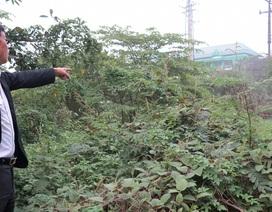 Vụ có phán quyết của tòa, HĐND vẫn ra Nghị quyết thu hồi đất: Thực hiện đúng luật?