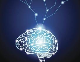 """Siêu máy tính Google tạo ra """"đứa con AI"""" ưu việt hơn bất kỳ AI nhân tạo nào"""