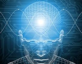 """Lãnh đạo của Google cho rằng """"người máy sẽ thông minh hơn con  người"""""""