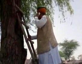 """Bộ trưởng Ấn Độ leo cây gọi điện thoại """"gây bão"""""""