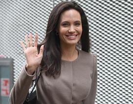 Angelina Jolie làm giáo sư thỉnh giảng tại trường Kinh tế London