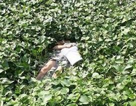 Người đàn ông cầm xô nhựa nằm chết dưới ao rau muống