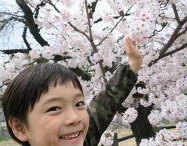 Trẻ em Nhật Bản hết nói lắp nhờ sự trợ giúp của bố mẹ ra sao?