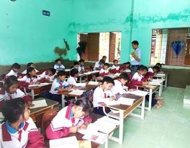 Quảng Nam dự kiến thi tuyển gần 1.200 viên chức giáo dục