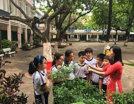 Cô giáo chia sẻ kỉ niệm bị học trò lớp 1 hôn lên mái tóc