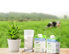 TH true MILK Organic: Sản phẩm nhỏ, bước đi lớn của ngành sữa Việt Nam