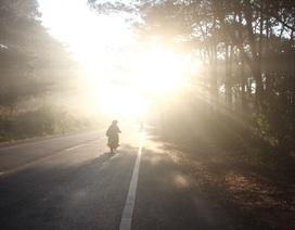 """Trời rét đậm, sương mù """"bủa vây"""" phố núi"""