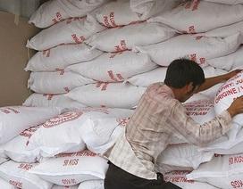 Việt Nam xuất siêu gần như tuyệt đối vào Nigeria