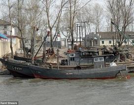 """Vì sao """"tàu ma"""" Triều Tiên liên tiếp trôi dạt vào bờ biển Nhật Bản?"""