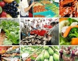 Vệ sinh an toàn thực phẩm: Thanh tra đột xuất, vi phạm chiếm gần 30%