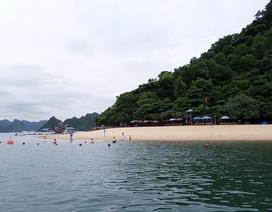 Du khách người Úc mất tích khi rơi xuống biển Quảng Ninh