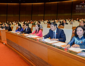 Quốc hội lập đoàn giám sát về quản lý, sử dụng vốn, tài sản nhà nước tại doanh nghiệp