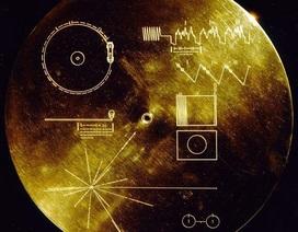"""Sai lầm lớn nhất của con người là gửi những """"bản đồ nguy hiểm"""" vào không gian?"""