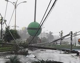 Lãnh đạo Trung Quốc thăm hỏi Việt Nam bị thiệt hại do bão số 12