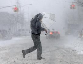 """Bão tuyết """"nhuộm trắng"""" New York, nhiều chuyến bay bị hủy"""