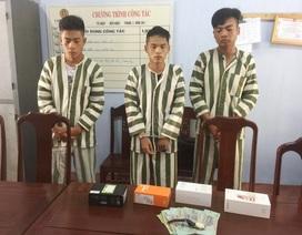 Bắt liên tiếp 4 tên trộm chuyên nghiệp tại Thừa Thiên Huế