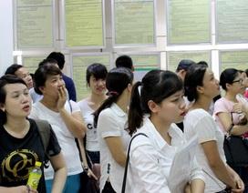 Hơn 300 chỉ tiêu tại Phiên GDVL dành cho lao động hưởng bảo hiểm thất nghiệp