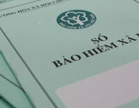 Bà Rịa - Vũng Tàu: Khởi kiện các doanh nghiệp nợ bảo hiểm xã hội