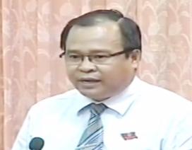 Cà Mau: Đại biểu HĐND lo lắng về hiện trạng bạo hành trẻ mầm non