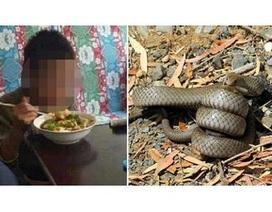 Cậu bé 10 tuổi ăn thịt rắn để sống sau gần một tháng lang thang