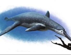 Phát hiện hóa thạch loài bò sát biển mới ở Nga