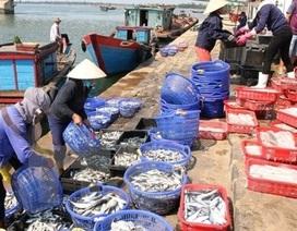 Tạm cấp kinh phí bồi thường sự cố môi trường biển lần 2