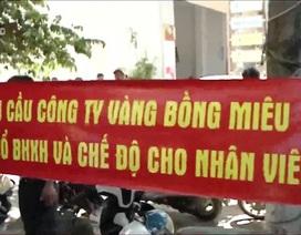 Người lao động công ty Vàng Bồng Miêu đòi sổ BHXH