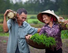Những khoảnh khắc đẹp khi đàn ông Việt giúp vợ làm việc nhà