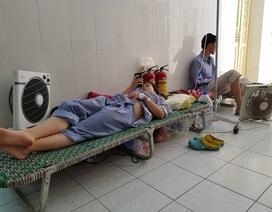 Hà Nội thêm gần 2.800 ca mắc sốt xuất huyết mới trong 1 tuần
