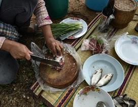 Ung thư đường mật cao nhất thế giới vì ăn cá sống