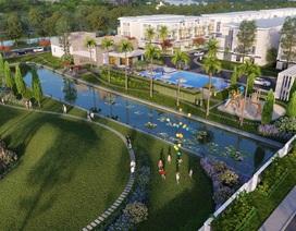 Xu hướng nhà liên kế hai sân vườn thu hút người mua