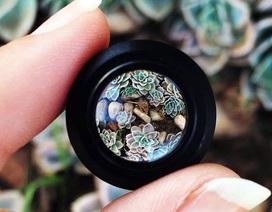 Mẹo tạo lens chụp macro cực đơn giản với smartphone