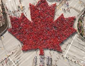 3.600 người xếp hình lá phong kỷ niệm 150 năm Quốc khánh Canada