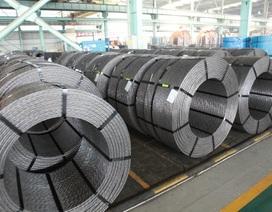 Hòa Phát tiên phong làm thép chất lượng cao thay thế hàng nhập khẩu
