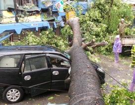 Cảnh báo người dân hạn chế ra đường khi có mưa giông