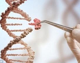 Liệu pháp chỉnh sửa gen - hy vọng mới cho bệnh nhân ung thư máu
