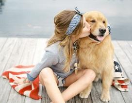 Bi hài chuyện chàng trai phải tranh tình cảm với... chó của bạn gái