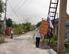 Nam Định: Lập chốt, rải 3 tấn vôi bột khắp xã dập dịch cúm H5N1