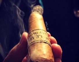 Những chuyện khó tin về thú chơi mới nổi: Hút cigar