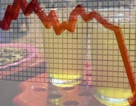Công ty con của Vinaconex đấu giá 1 triệu cổ phần