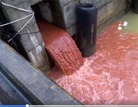 Bác thông tin video cống xả nước thải màu đỏ quay ở Formosa