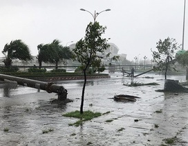Khắc phục tình trạng hàng loạt địa phương mất điện vì bão Damrey