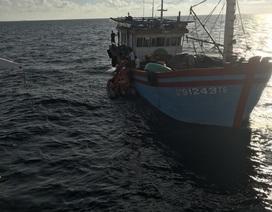 Cứu ngư dân bị thương, hôn mê sâu qua cơn nguy kịch