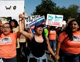 15 bang kiện Tổng thống Trump vì hủy chương trình nhập cư DACA